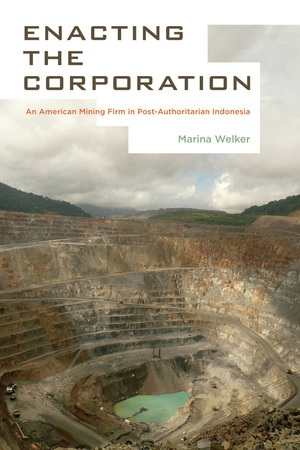 Enacting the Corporation by Marina Welker