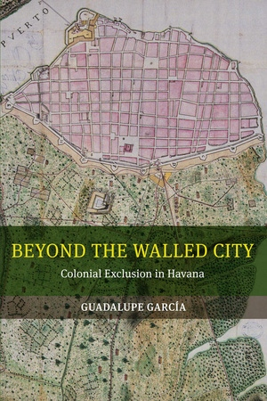Beyond the Walled City by Guadalupe Garcia