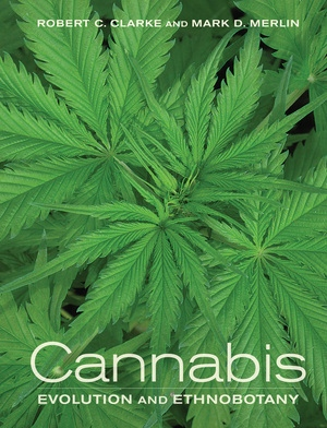 Cannabis by Robert Clarke, Mark Merlin