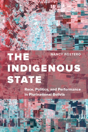 The Indigenous State by Nancy Postero
