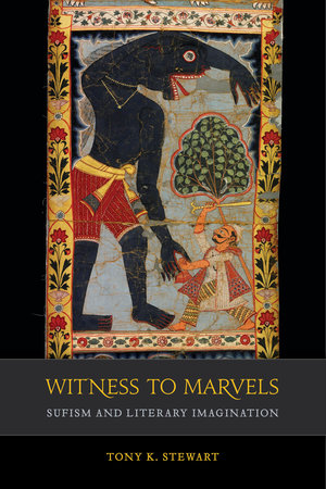 Witness to Marvels by Tony K. Stewart