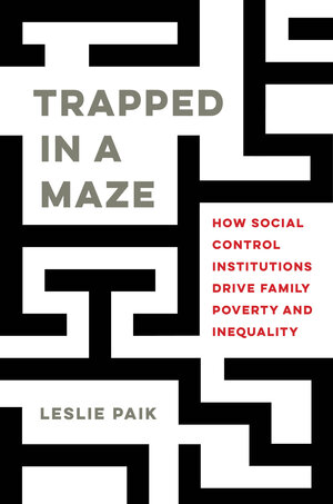Trapped in a Maze by Leslie Paik
