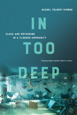 In Too Deep by Rachel Kimbro