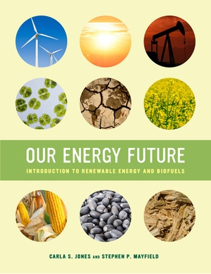 Our Energy Future by Carla S. Jones, Stephen P. Mayfield