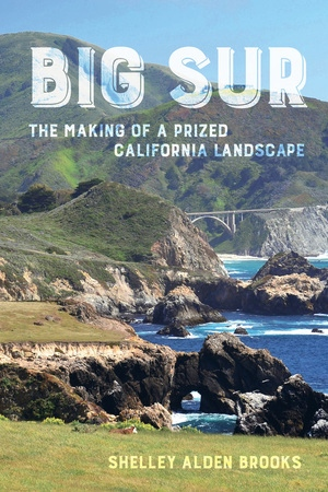 Big Sur by Shelley Alden Brooks