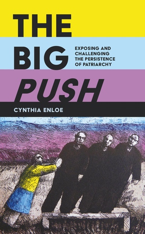 The Big Push by Cynthia Enloe