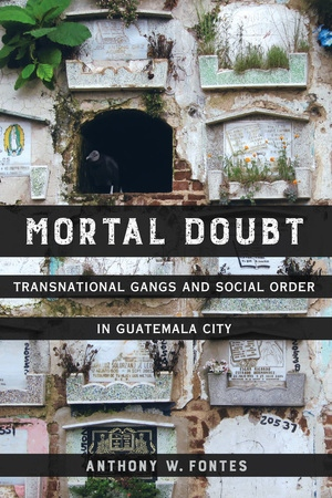 Mortal Doubt by Anthony W. Fontes