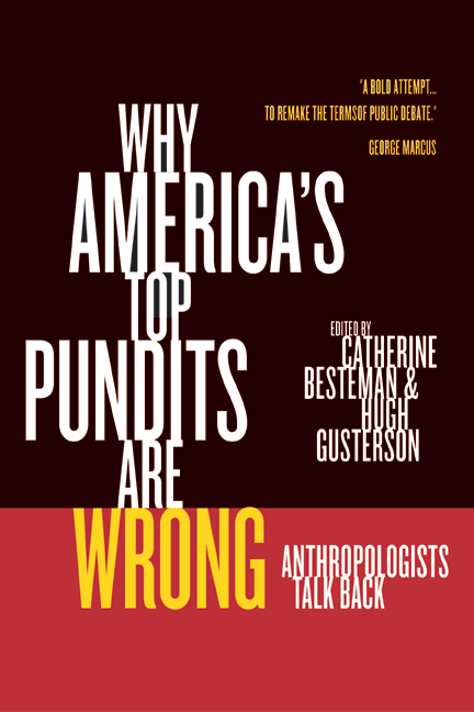 Why americas top pundits are wrong by catherine besteman hugh download cover image fandeluxe Images