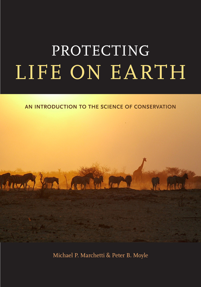 an introduction to the life of paul colinvaux the ecologist Amazon expeditions in this vivid memoir of a life in science, ecologist paul colinvaux takes his readers from the alaskan tundra to steamy amazon jungles, from the galapagos islands (before.
