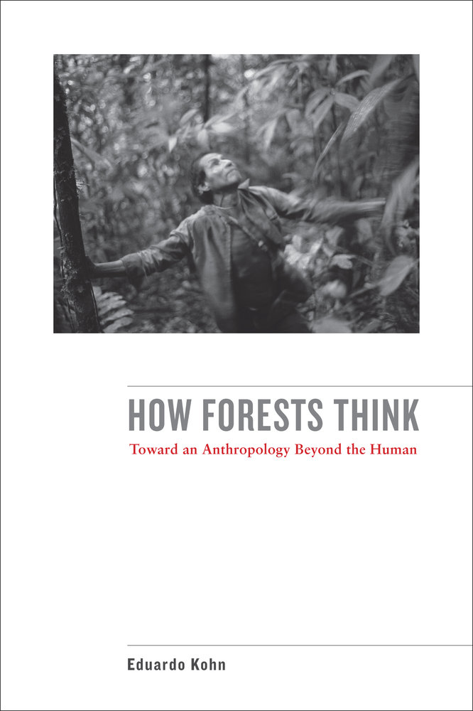 How forests think by eduardo kohn paperback university of download cover image fandeluxe Choice Image