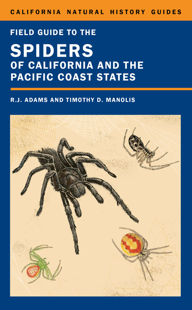 Field Guide To The Spiders Of California And The Pacific