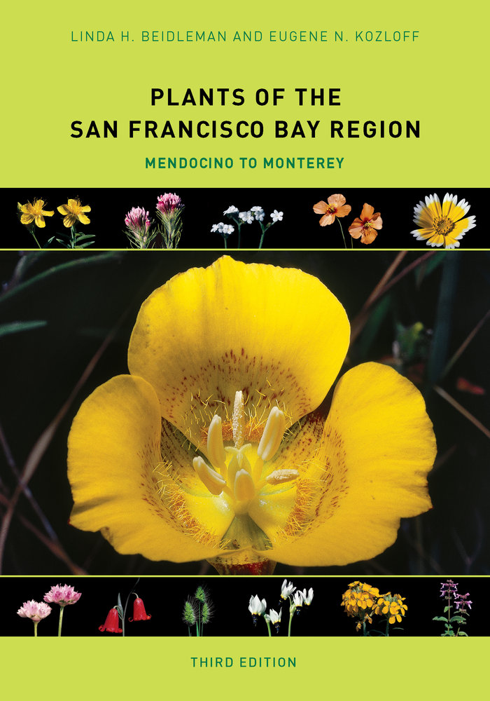 Plants Of The San Francisco Bay Region By Linda H