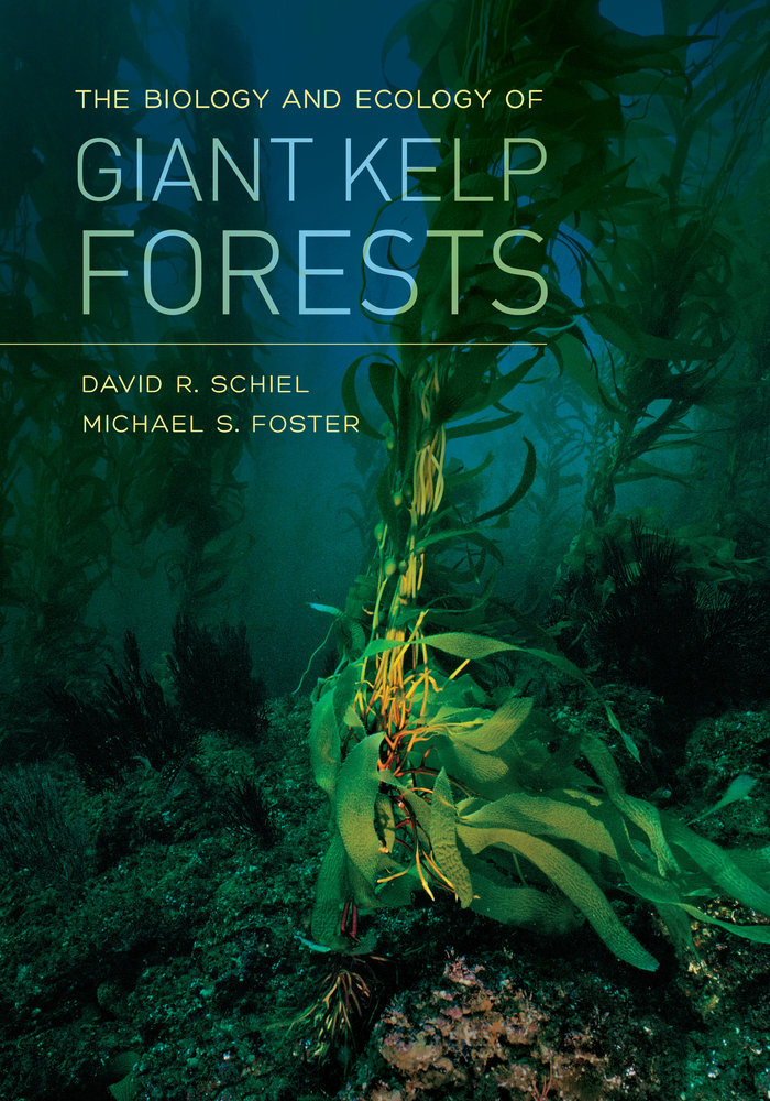 The biology and ecology of giant kelp forests by david r schiel download cover image fandeluxe Images