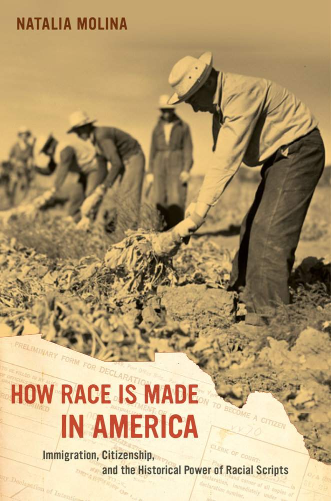 How Race Is Made in America book cover